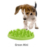 Mini Green Feeder